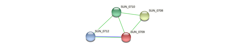 SUN_0709 protein (Sulfurovum sp. NBC371) - STRING interaction network