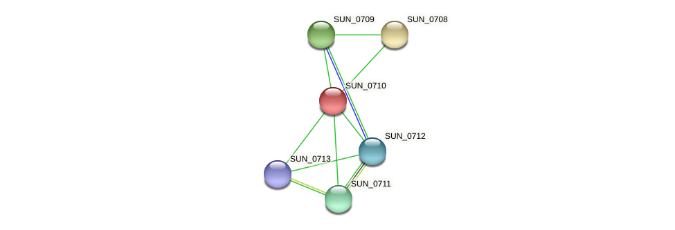 SUN_0710 protein (Sulfurovum sp. NBC371) - STRING interaction network