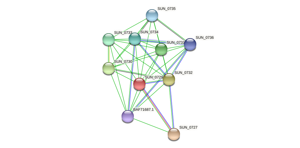 SUN_0729 protein (Sulfurovum sp. NBC371) - STRING interaction network