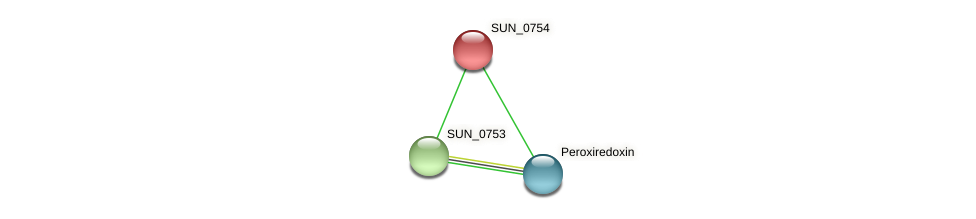 SUN_0754 protein (Sulfurovum sp. NBC371) - STRING interaction network
