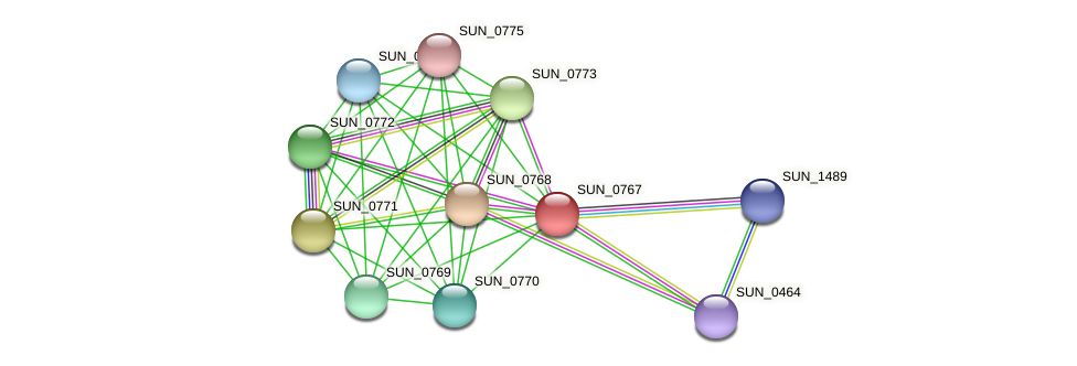 SUN_0767 protein (Sulfurovum sp. NBC371) - STRING interaction network