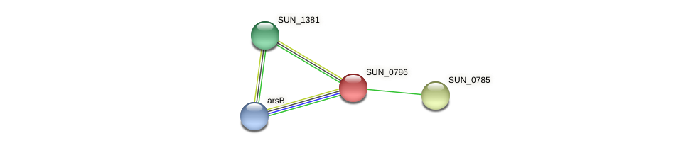 SUN_0786 protein (Sulfurovum sp. NBC371) - STRING interaction network