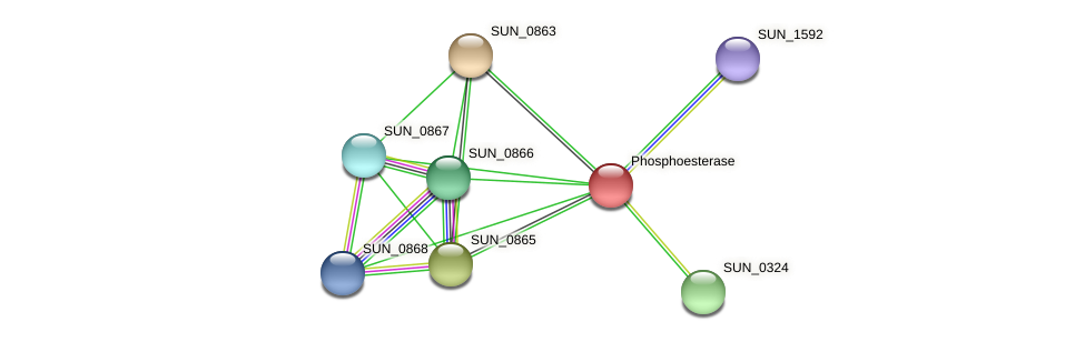 SUN_0864 protein (Sulfurovum sp. NBC371) - STRING interaction network
