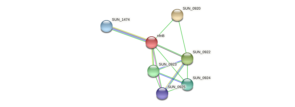 nfnB protein (Sulfurovum sp. NBC371) - STRING interaction network