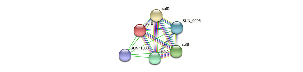 sufE protein (Sulfurovum sp. NBC371) - STRING interaction network