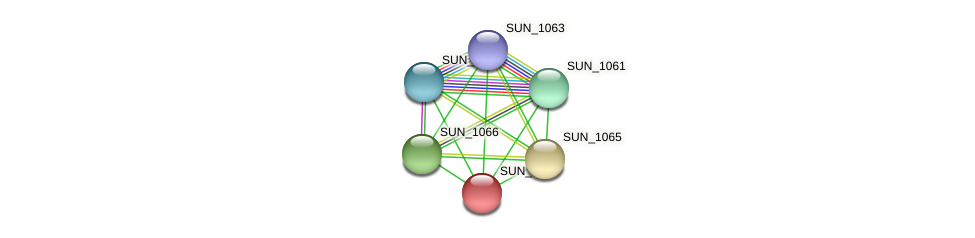 SUN_1064 protein (Sulfurovum sp. NBC371) - STRING interaction network