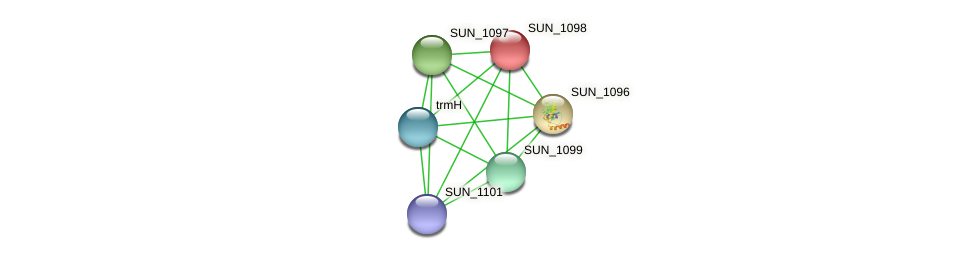 SUN_1098 protein (Sulfurovum sp. NBC371) - STRING interaction network