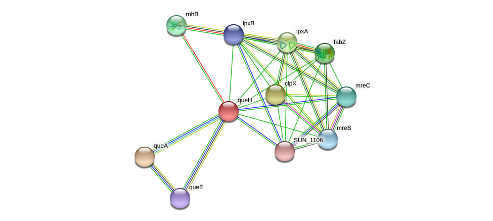 SUN_1113 protein (Sulfurovum sp. NBC371) - STRING interaction network