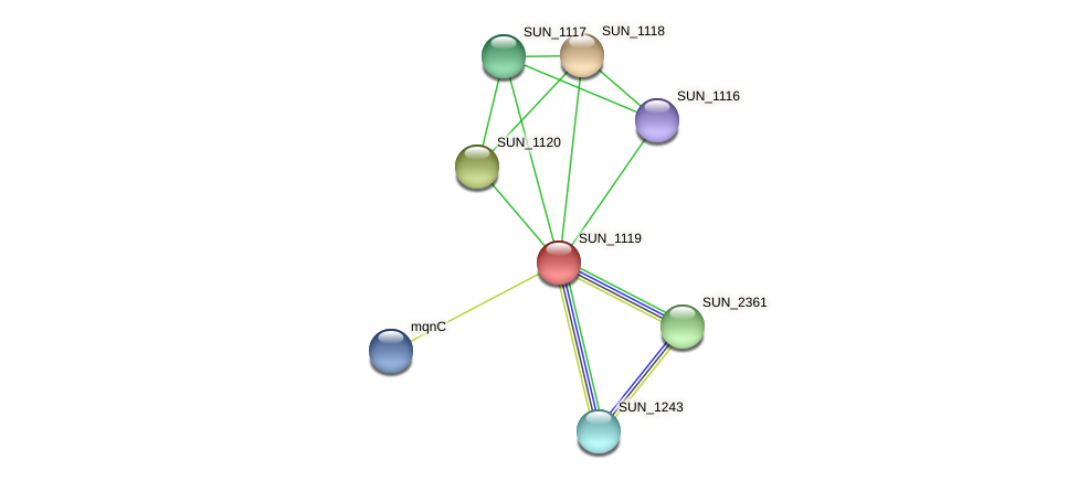SUN_1119 protein (Sulfurovum sp. NBC371) - STRING interaction network