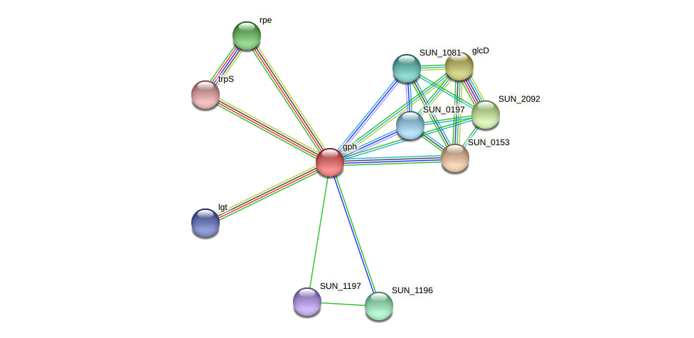 gph protein (Sulfurovum sp. NBC371) - STRING interaction network