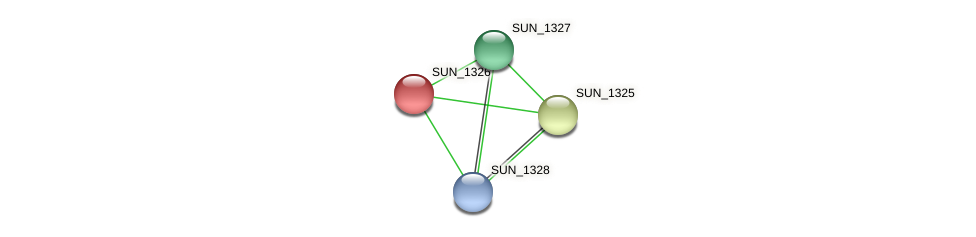 SUN_1326 protein (Sulfurovum sp. NBC371) - STRING interaction network