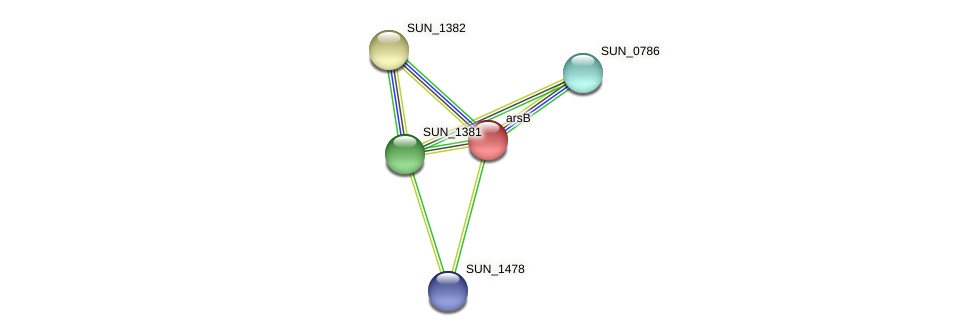 arsB protein (Sulfurovum sp. NBC371) - STRING interaction network