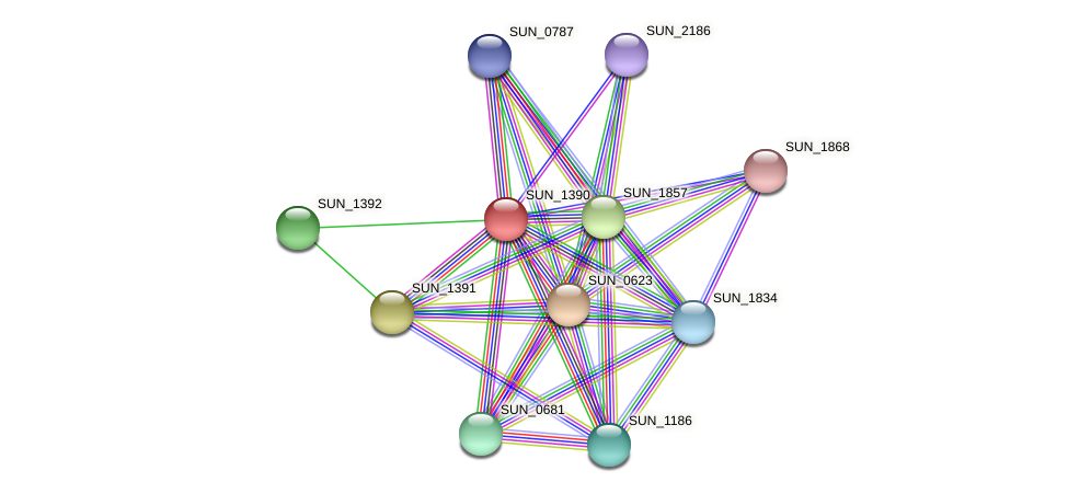 SUN_1390 protein (Sulfurovum sp. NBC371) - STRING interaction network