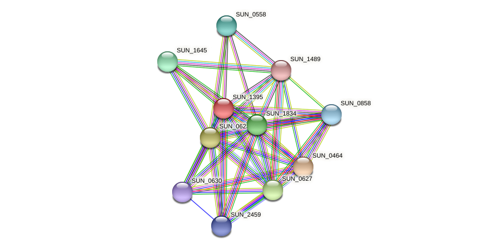 SUN_1395 protein (Sulfurovum sp. NBC371) - STRING interaction network