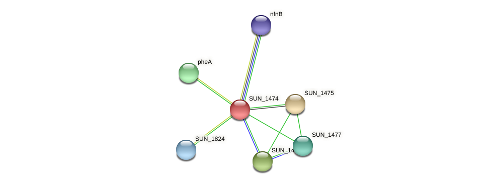 SUN_1474 protein (Sulfurovum sp. NBC371) - STRING interaction network