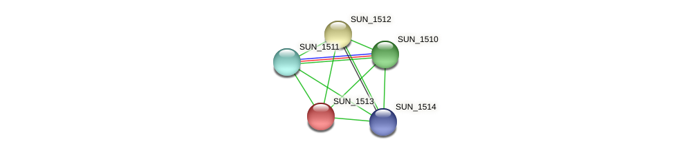 SUN_1513 protein (Sulfurovum sp. NBC371) - STRING interaction network