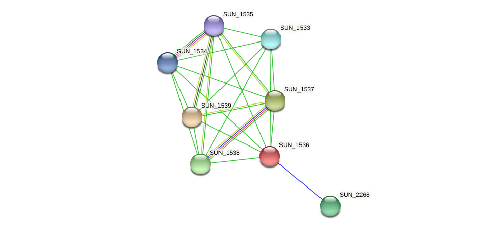 SUN_1536 protein (Sulfurovum sp. NBC371) - STRING interaction network