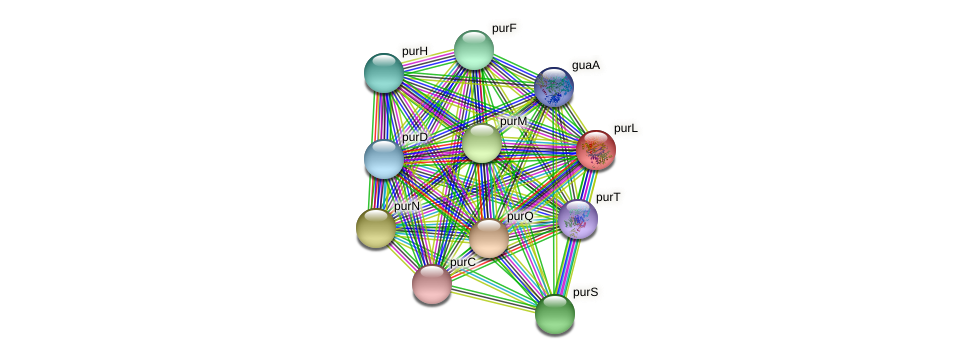 purL protein (Sulfurovum sp. NBC371) - STRING interaction network