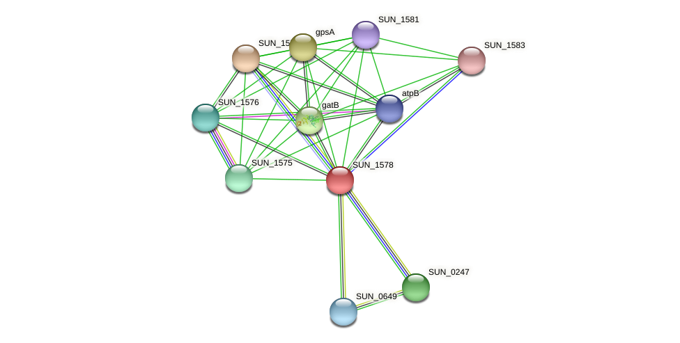 SUN_1578 protein (Sulfurovum sp. NBC371) - STRING interaction network