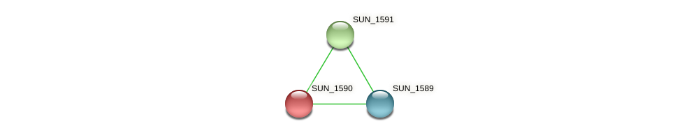 SUN_1590 protein (Sulfurovum sp. NBC371) - STRING interaction network