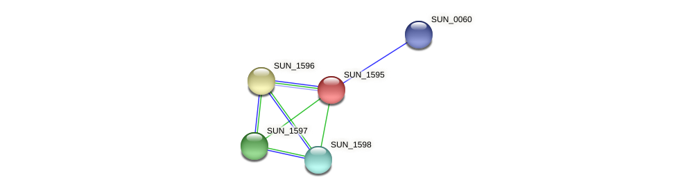 SUN_1595 protein (Sulfurovum sp. NBC371) - STRING interaction network