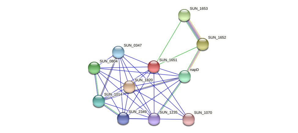 SUN_1651 protein (Sulfurovum sp. NBC371) - STRING interaction network