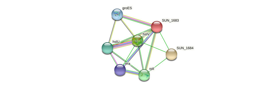 SUN_1683 protein (Sulfurovum sp. NBC371) - STRING interaction network