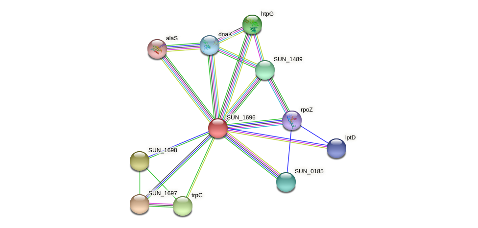 SUN_1696 protein (Sulfurovum sp. NBC371) - STRING interaction network