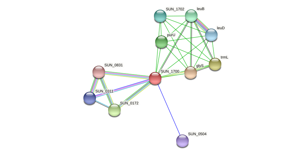 SUN_1700 protein (Sulfurovum sp. NBC371) - STRING interaction network