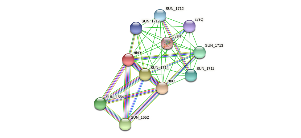rfbD protein (Sulfurovum sp. NBC371) - STRING interaction network