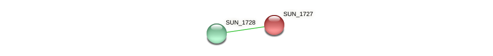 SUN_1727 protein (Sulfurovum sp. NBC371) - STRING interaction network