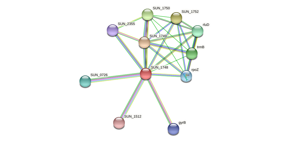 SUN_1748 protein (Sulfurovum sp. NBC371) - STRING interaction network