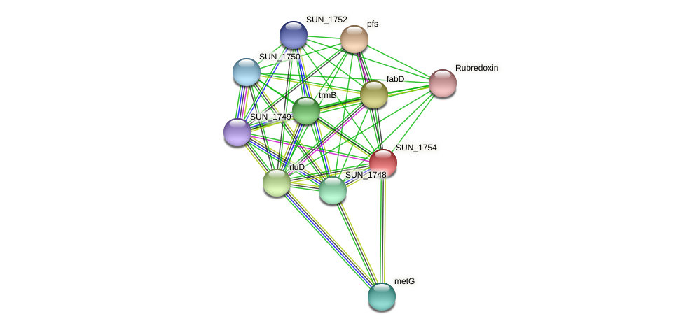SUN_1754 protein (Sulfurovum sp. NBC371) - STRING interaction network