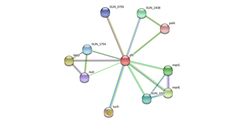 pfs protein (Sulfurovum sp. NBC371) - STRING interaction network
