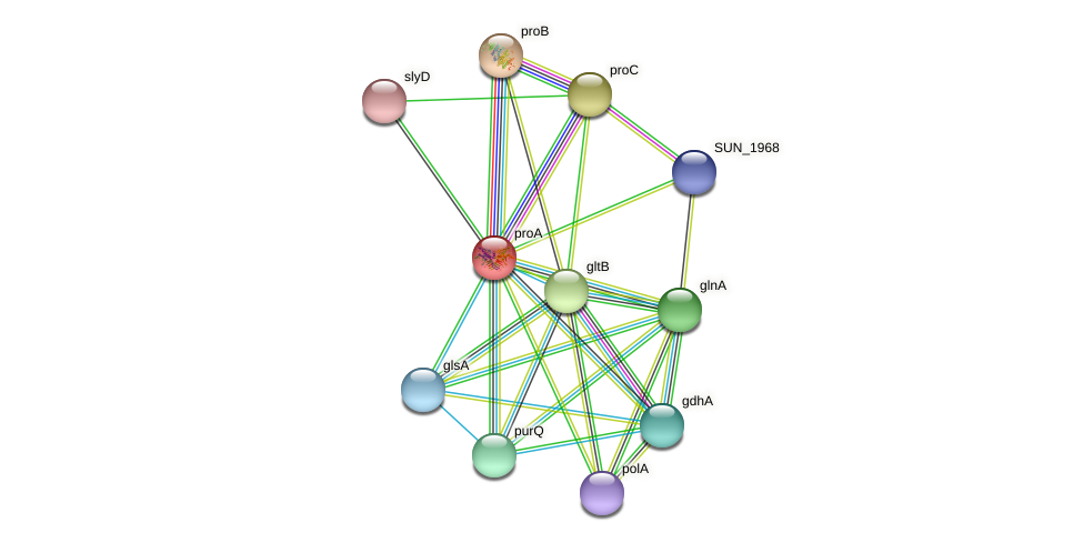 proA protein (Sulfurovum sp. NBC371) - STRING interaction network