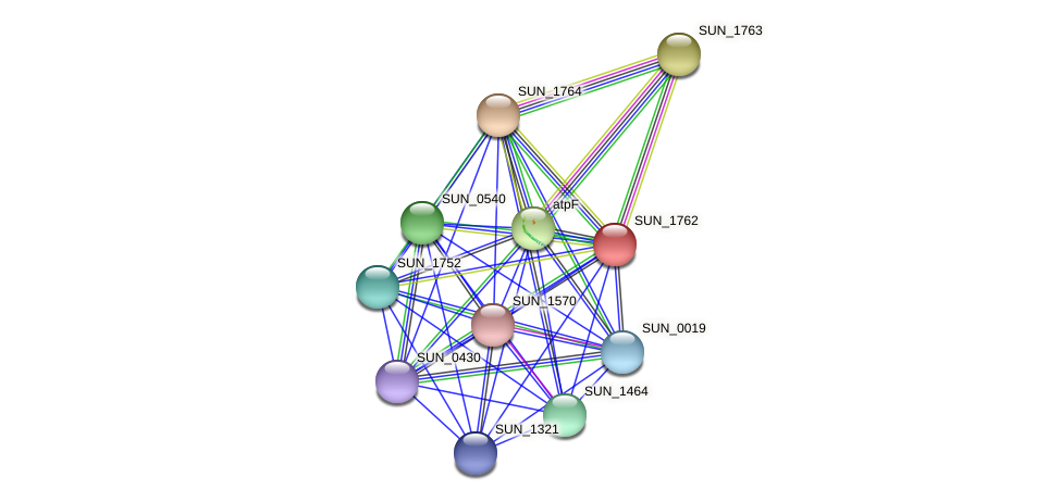 SUN_1762 protein (Sulfurovum sp. NBC371) - STRING interaction network