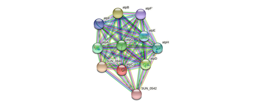 atpC protein (Sulfurovum sp. NBC371) - STRING interaction network