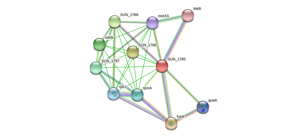 SUN_1785 protein (Sulfurovum sp. NBC371) - STRING interaction network