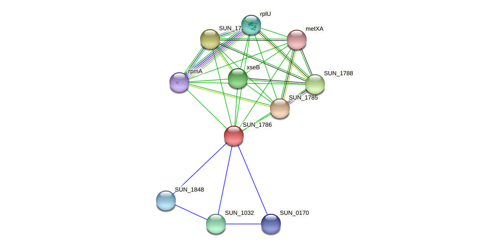 SUN_1786 protein (Sulfurovum sp. NBC371) - STRING interaction network