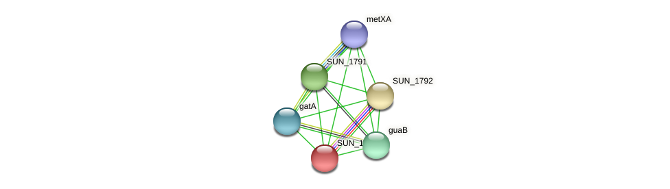 SUN_1793 protein (Sulfurovum sp. NBC371) - STRING interaction network