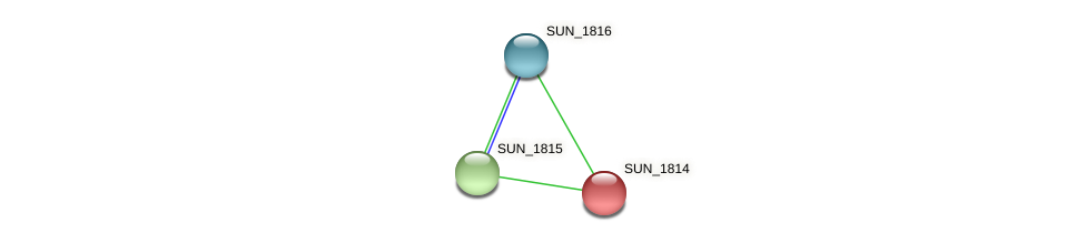 SUN_1814 protein (Sulfurovum sp. NBC371) - STRING interaction network