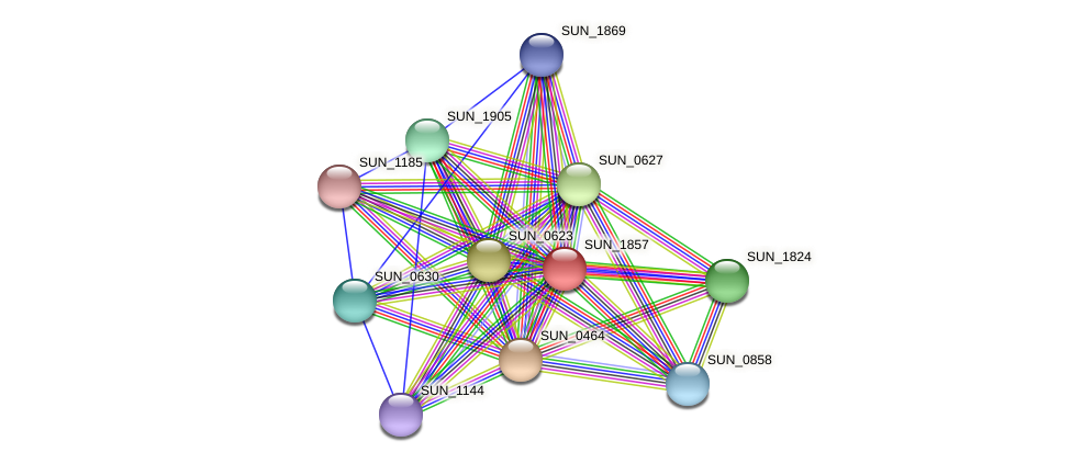 SUN_1857 protein (Sulfurovum sp. NBC371) - STRING interaction network