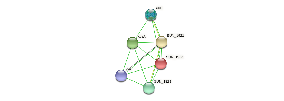 SUN_1922 protein (Sulfurovum sp. NBC371) - STRING interaction network