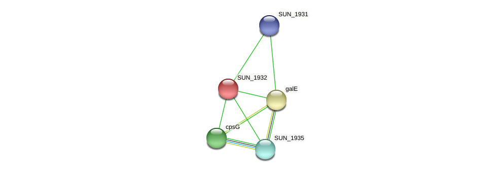 SUN_1932 protein (Sulfurovum sp. NBC371) - STRING interaction network