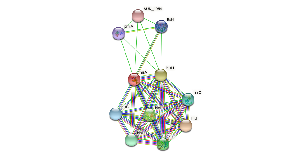 hisA protein (Sulfurovum sp. NBC371) - STRING interaction network