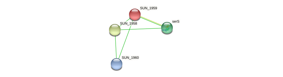 SUN_1959 protein (Sulfurovum sp. NBC371) - STRING interaction network
