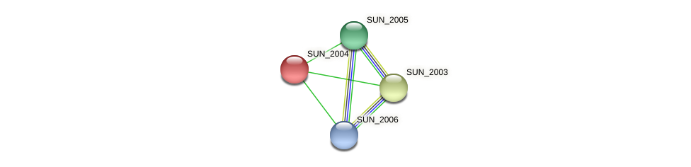 SUN_2004 protein (Sulfurovum sp. NBC371) - STRING interaction network
