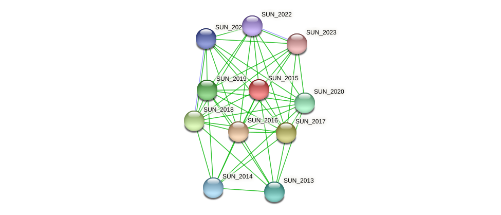 SUN_2015 protein (Sulfurovum sp. NBC371) - STRING interaction network