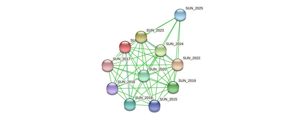 SUN_2021 protein (Sulfurovum sp. NBC371) - STRING interaction network