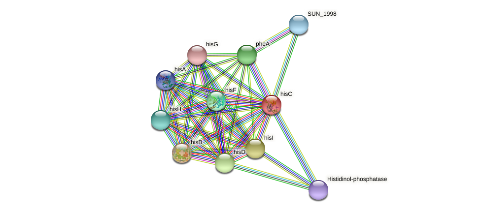 hisC protein (Sulfurovum sp. NBC371) - STRING interaction network